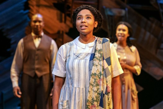 The Color Purple 2_Paper Mill Playhouse_Photo by Jerry Dalia